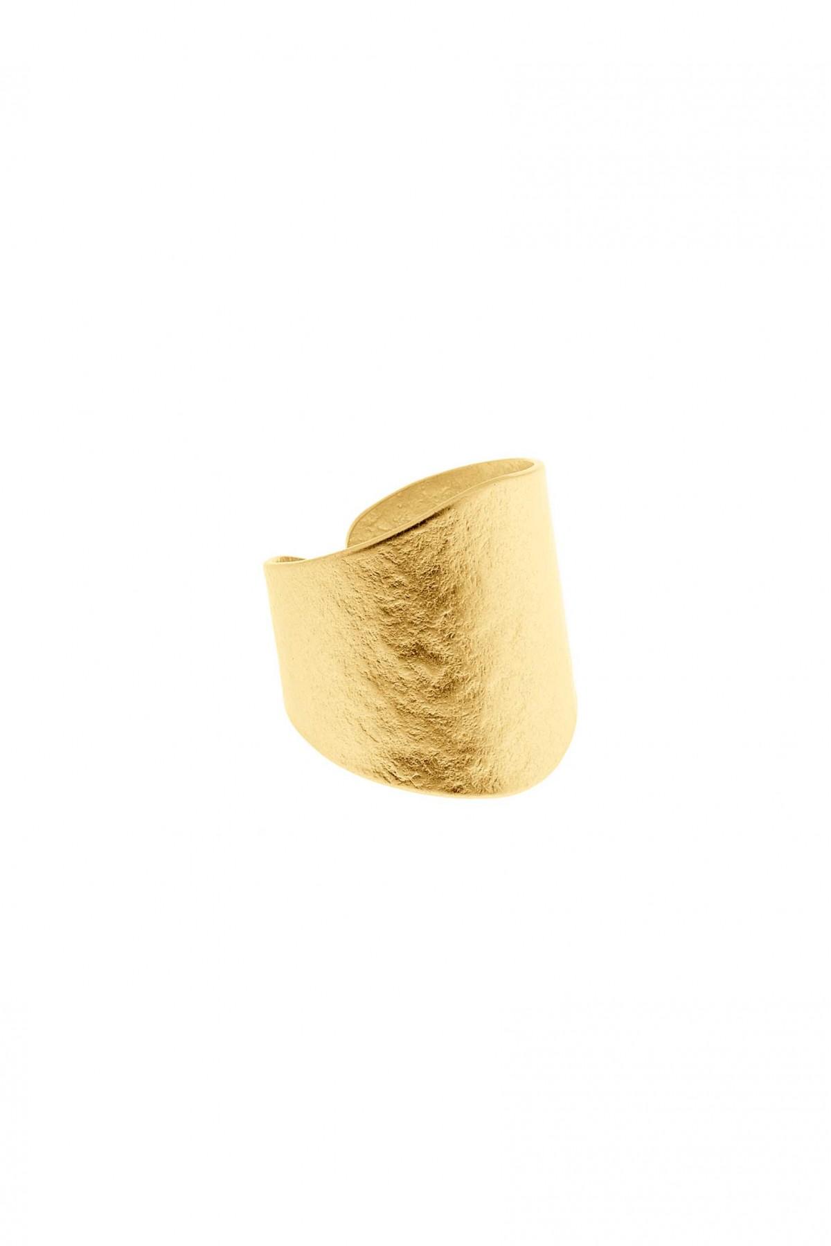 Lenny Ring