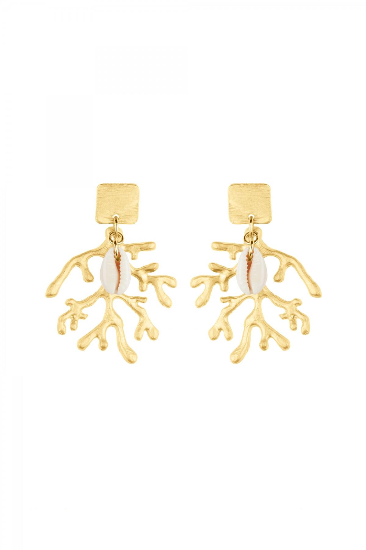 Seaweed Shell Earrings