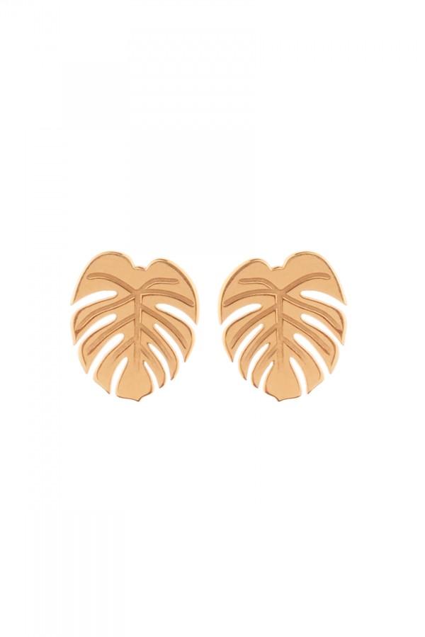 Brincos Palm